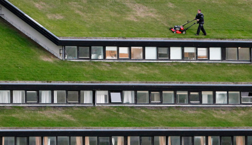 A workman mows the grass roof of a government building near the capital city of Tórshavn, on August 13, 2009. © Bob Strong/Reuters