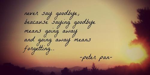 prettyunusualx:  There are certain moments when I realize why Peter Pan is my favorite disney story and character <3