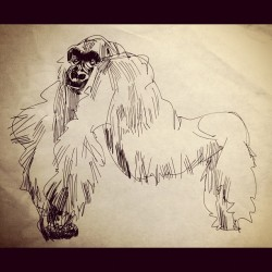 young gorilla doodle (Taken with Instagram)