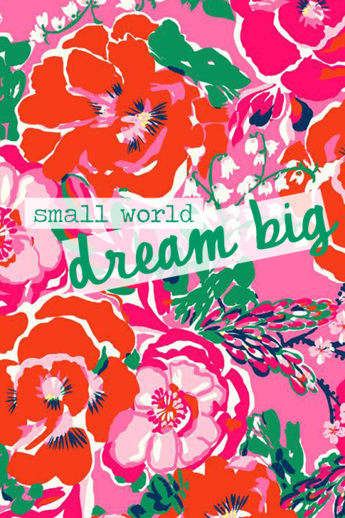 midwestern-belle:  Small World…Dream Big  true that.