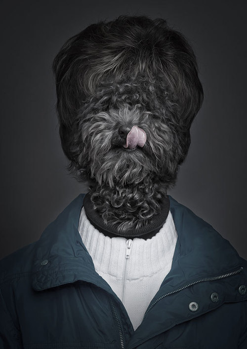 laughingsquid:  Underdogs, Portraits of Dogs Blended With Their Human Companions