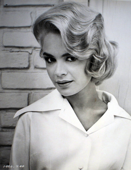 "the60sbazaar:  Sandra Dee c.1962   Stunningly beautiful and a good actress relegated to the tail end of the saccharine movie era.  Her last film, 'The Dunwich Horror"" was as tragic as her divorce which made her supposedly unmarketable in movies.  (She was married to Bobby Darin)."