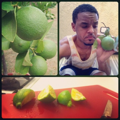 Picked Fresh off the lime tree that grows outside my balcony! #SweetLife 😀🏡🍏🍋🍈🌳