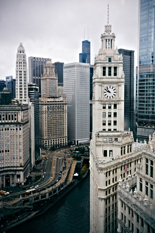 plane-ticket:  Wrigley Building from Tribune Tower
