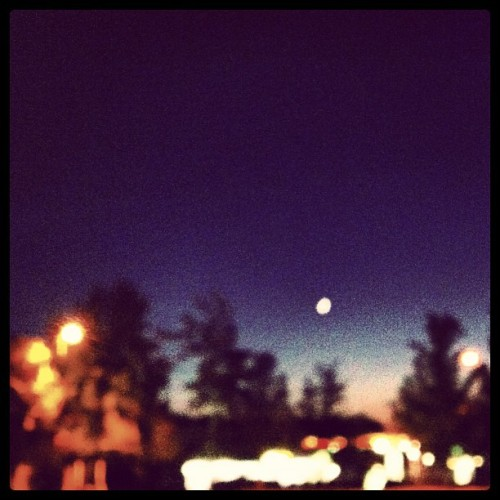 #evening #moon #lights #trees #indigo #blue #orange #sky