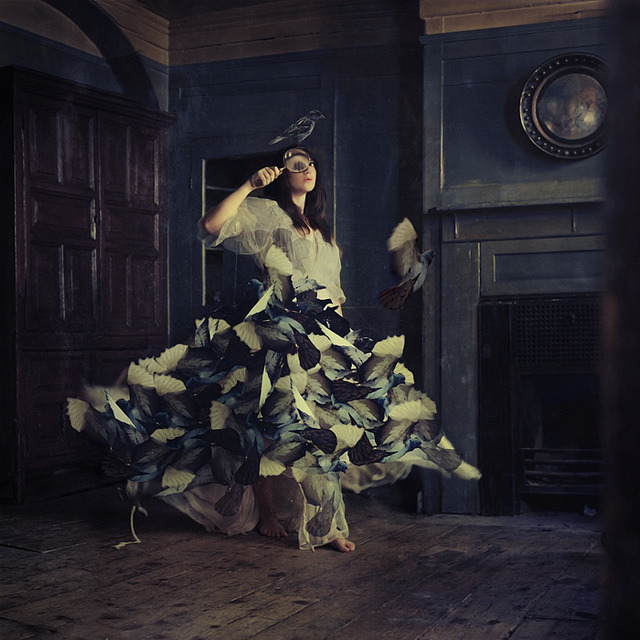 the curiosity room by brookeshaden on Flickr.