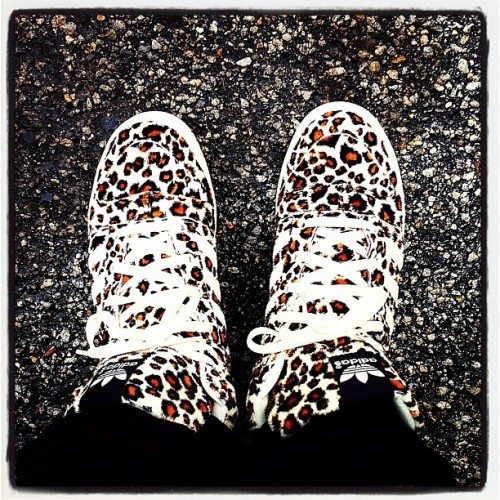"These Rainy Day Leopards complement ""Future Legendary"" nicely. If you dig the track below you can listen to the tape on my site, http://soarsespoken.com, or on SoundCloud here: http://bit.ly/STH-tape"