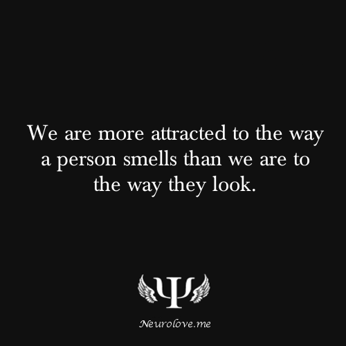 psych-facts:  We are more attracted to the way a person smells than we are to the way they look.