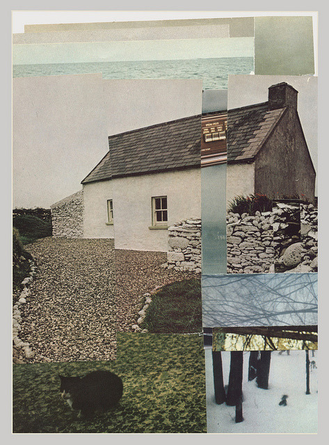 robbiefuu:  greyhouse by Lily Camille Clark on Flickr.