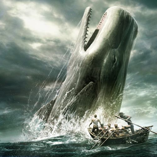 "aquaticwonder:  161's Anniversary: Moby Dick! ""There is a wisdom that is woe; but there is a woe that is madness"" - Herman Mellvile"