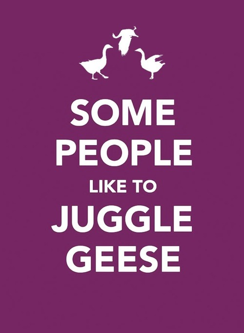 channinglovesjoss:  Some people juggle geese!