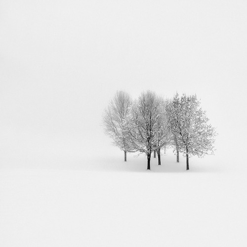 Lonely From photographer Pawel Klarecki.View Postshared via WordPress.com
