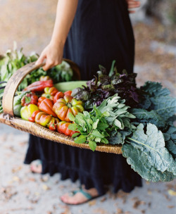lindasinklings:  lindasinklings: Santa Barbara farmers market. via Image of the Month - Santa Barbara Farmers' Market - Karen Wise Photo Blog)
