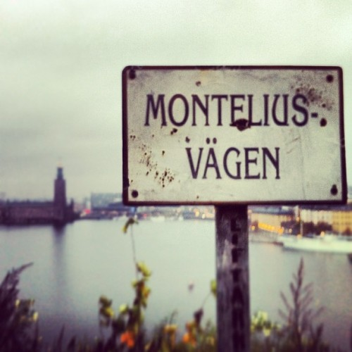 Followed @GuidePal 's suggestion & found my way to Monteliusvägen for the city view. #stockholm #sweden #travel  (at Monteliusvägen)