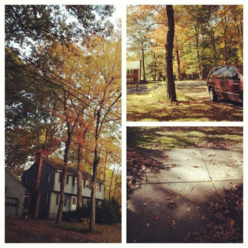 #fall #season #autumn #home