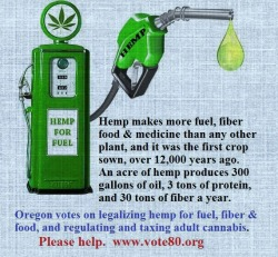 fullblaststereo:  yourmaj3sty:  Hemp  anyone can grow it subverts the petrodollar oh.. ok that's why it's still illegal