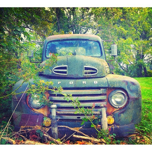 Ford tough // Edited with the Wood Camera app — available in the App Store.