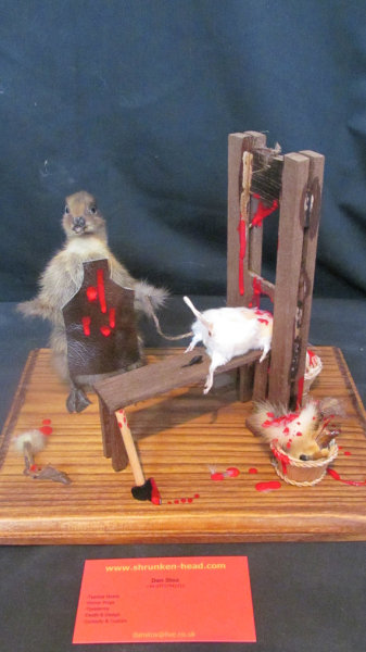 (via The Executioner taxidermy display CUSTOM by shrunkenheaddotcom)