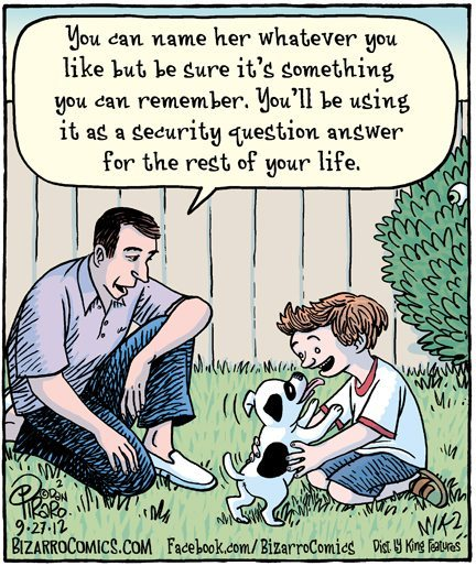 Dogs and Password