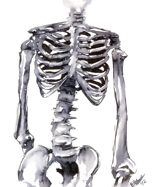 "tribalarts:  Skeleton Study, Marker wash on paper. 17"" x 14"" 2012"