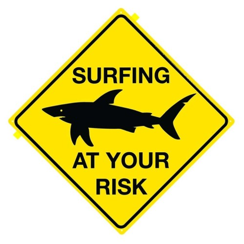 The Surfer's Guide to taking Risks
