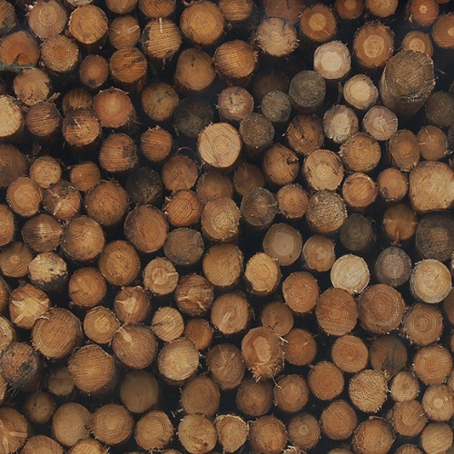 (reblogged) Every summer we stacked and dried chords of wood for the winter. It was a full day event, full of music, sweating, splinters, and constantly brushing spiders/ants/and other insects off one's arms, with an epic dinner awaiting when the last few pieces were stored after sundown.