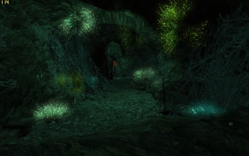Screenshot from the Lord of the Rings Online Riders of Rohan. I walked into this cave and paused…