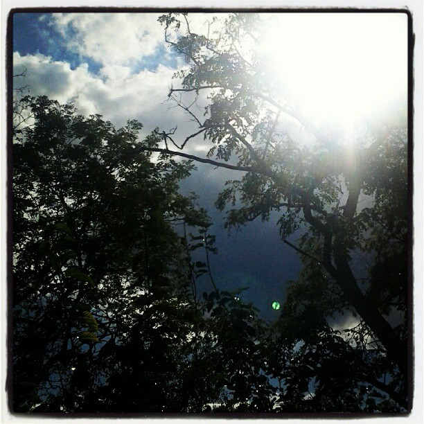 You are my sunshine, my only sunshine. #sun #sunshine #friday #sky #blue #uga #georia
