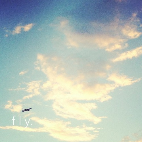 fly. #sky #clouds #plane #type #typography