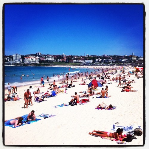 Well hello Bondi summer sunshine… Bondi Beach, Australia www.fearmanphoto.com