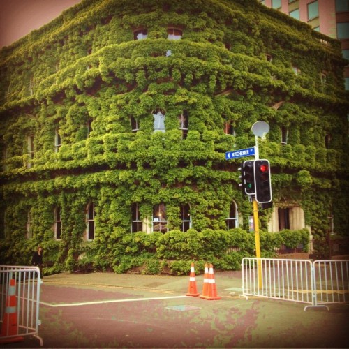 #Green living #architecture