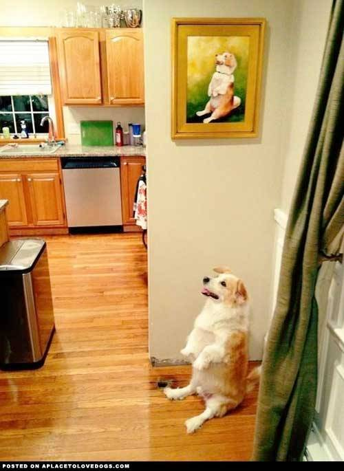 aplacetolovedogs:  Silly dog poses for painting of himself. Wait! What? Original Article