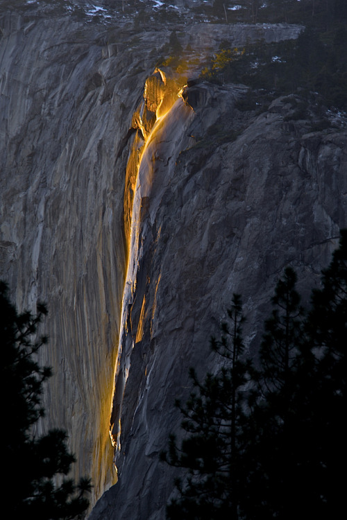 inoperant:  FIRE FALL 2012-02-19 at 17-16-39 (by SRAPADA (STAN RAPADA))
