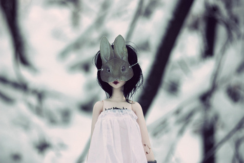 arodeandolls:  Mascarade: Le Lièvre by Azuria~ (account changed) on Flickr.