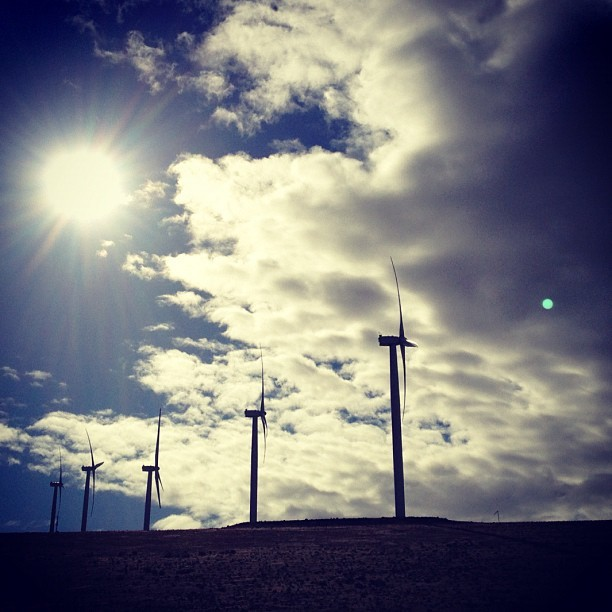 1,883 miles in, we found sun and this wind farm #pdxbound  (at Harvest Wind Farm)