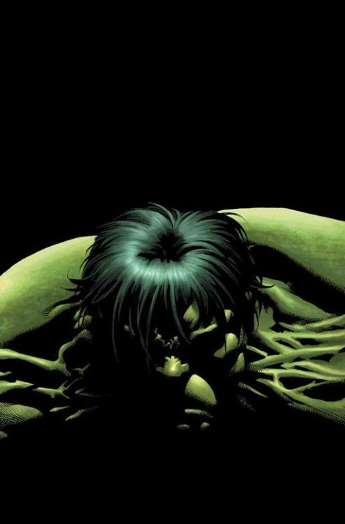 Hulk by Mike Deodato junior    www.comicbookquest.com
