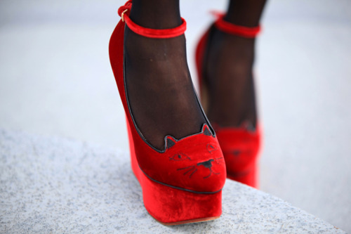 These Charlotte Olympia Wedges are absolutely purrfect