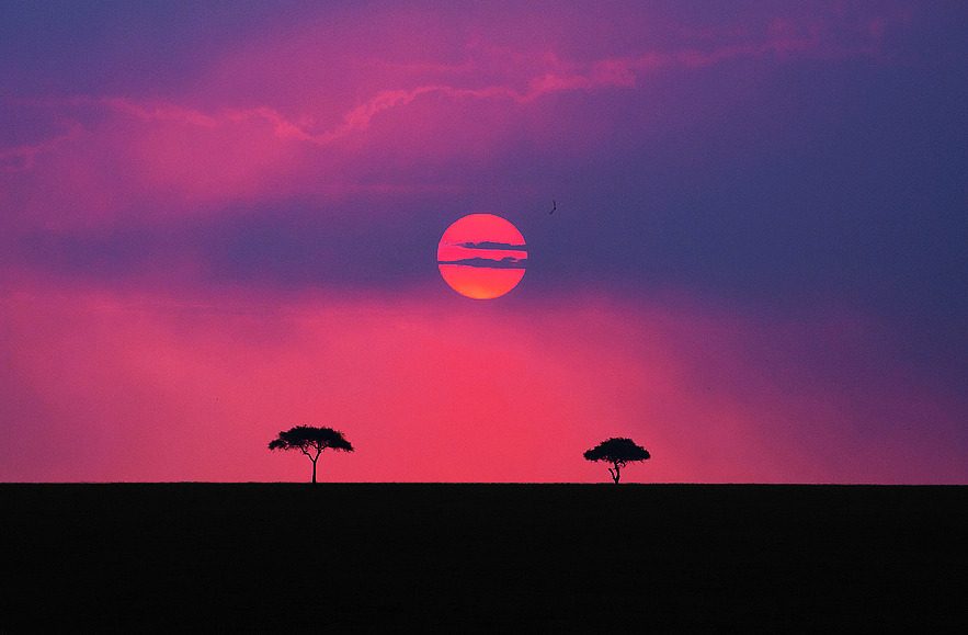 "(vía 500px / Photo ""Land of the Maasai (Kenya)"" by Aubrey Stoll)"