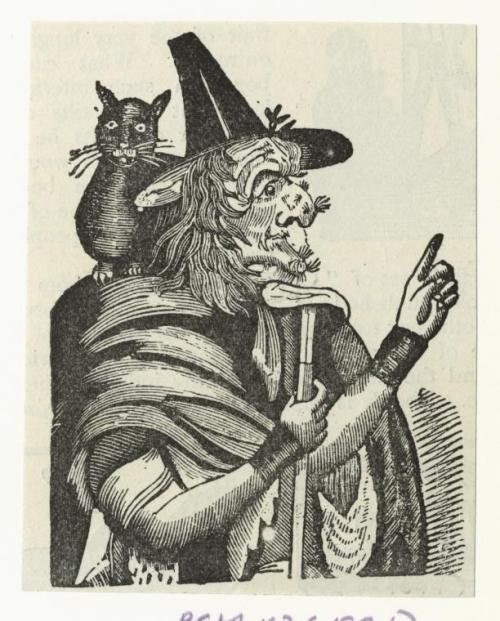 """Witch and a black cat"" 1894 from The Picture Magazine  This black cat looks like an inflatable beach toy from the 1920s. Or a seal, I guess."