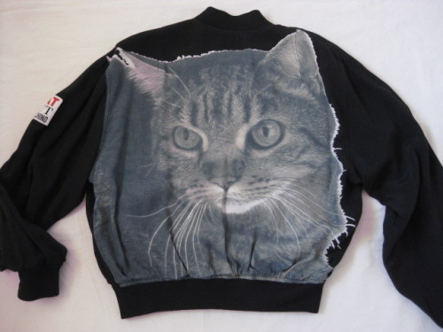 cat cut bomber | moschino