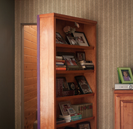 stashvault:  This rec room has a secret bookcase door entrance.