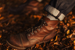 redwingshoesamsterdam:  The 8111 Iron Ranger in the autumn leafs