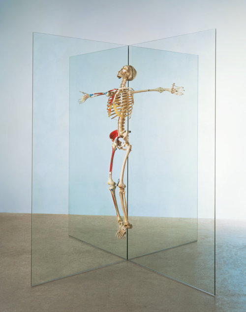 Resurrection (1998 - 2003) by Damien Hirst