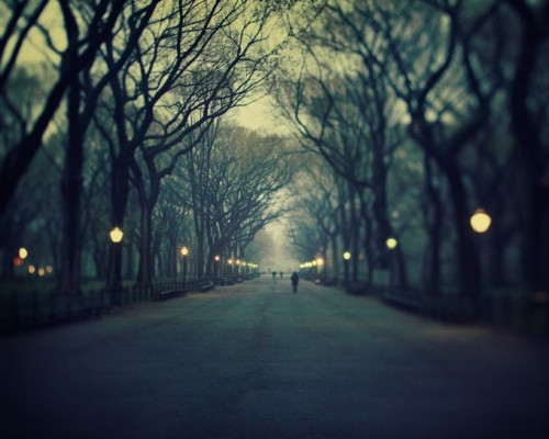 GPONYC WED. The beautiful and iconic Literary Walk in Central Park is creepy and romantic all at the same time.