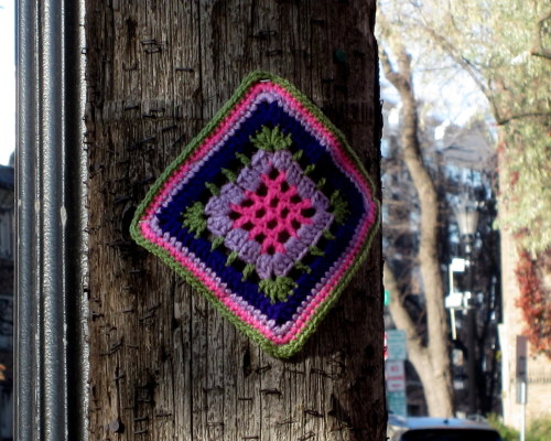 Granny #yarnbomb, Loring Park neighborhood