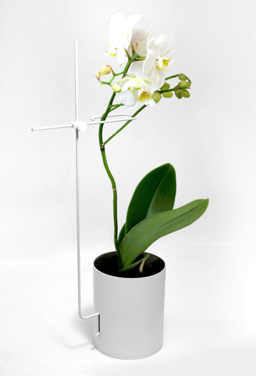 "fastcodesign:  For flowers that are so naturally elegant, domestic orchids are seriously design-challenged. Not the blooms themselves, of course—it's that unsightly but ubiquitous stick-and-teensy-hair-clip combo that keeps the stems standing tall. Yeonju Yang, half of London-based studio Yang:Ripol, had been regularly tending to these particular blossoms for almost five years before reaching a kind of creative epiphany. ""It's funny how sometimes things stare at you in the face for so long until the designer mind clicks in and you realize—here is actually a problem which needs resolving,"" he tells Co.Design."