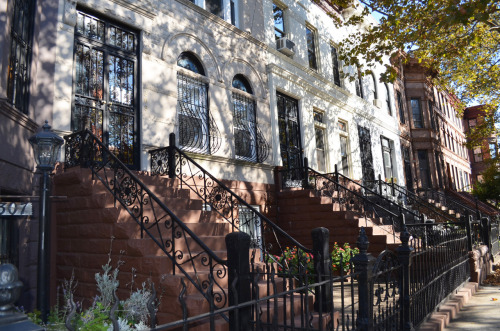 Brooklyn Brownstones - Decatur Street - Bedford - Stuyvesant, Brooklyn, NY photo (c) Alan Strauber (all rights reserved) 10.21.12