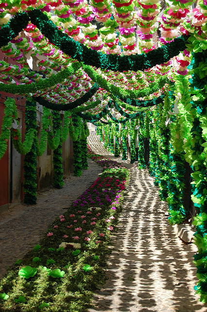 visitheworld:  Beautiful decorated streets during Festival of the Tabuleiros in Tomar, Portugal (by ernani balsa).