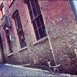 #seattle #gum #gumwall #northwest #city #cold #urban #gross #art #alley #sea #pike #pikeplace  (at Gum Wall)