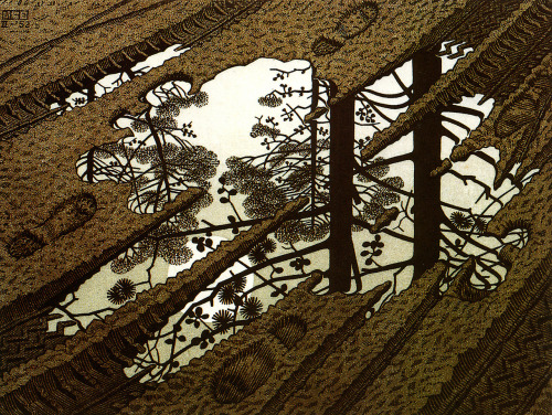 """Puddle"", 1954  By: M.C. ESCHER (Maurits Cornelis)…."